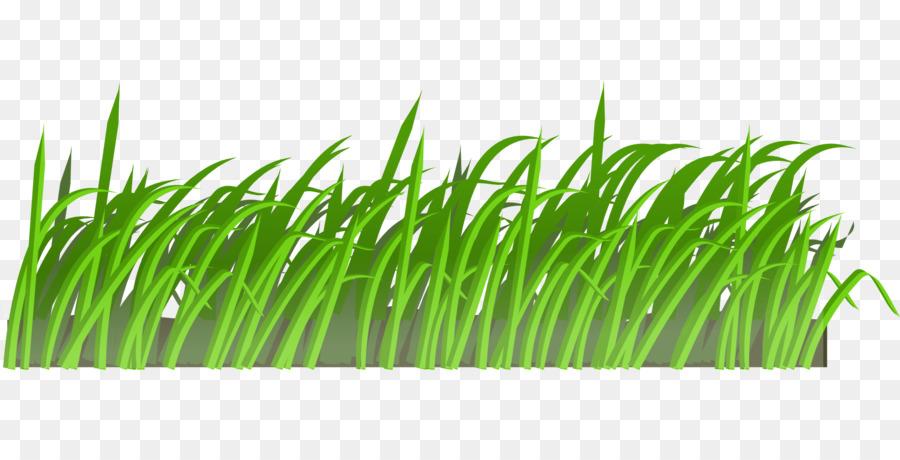 الحديقة الكرتون جزازة العشب صورة بابوا نيو غينيا
