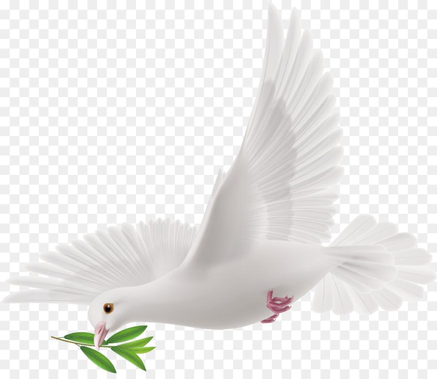 السلام الحمائم كرموز الفنون الزخرفية صورة بابوا نيو غينيا