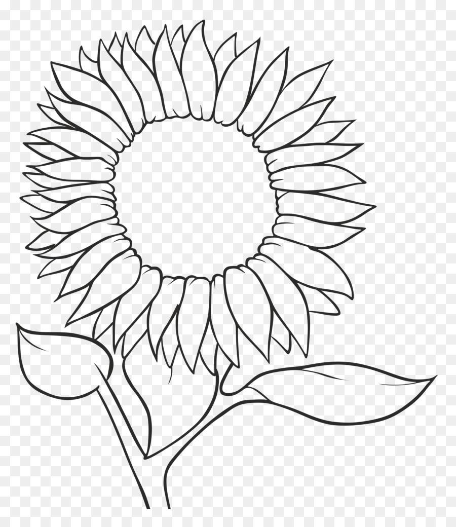 حقيقة قائمة المصطلحات مرتبة طريقة رسم وردة عباد الشمس Dsvdedommel Com
